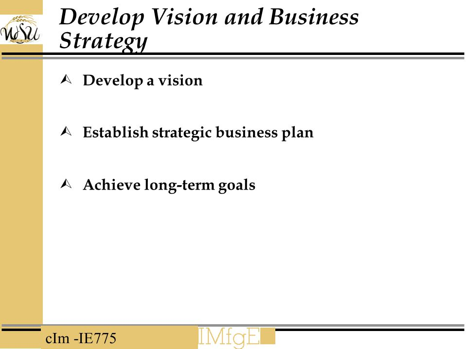 cIm -IE775 Develop Vision and Business Strategy  Develop a vision  Establish strategic business plan  Achieve long-term goals