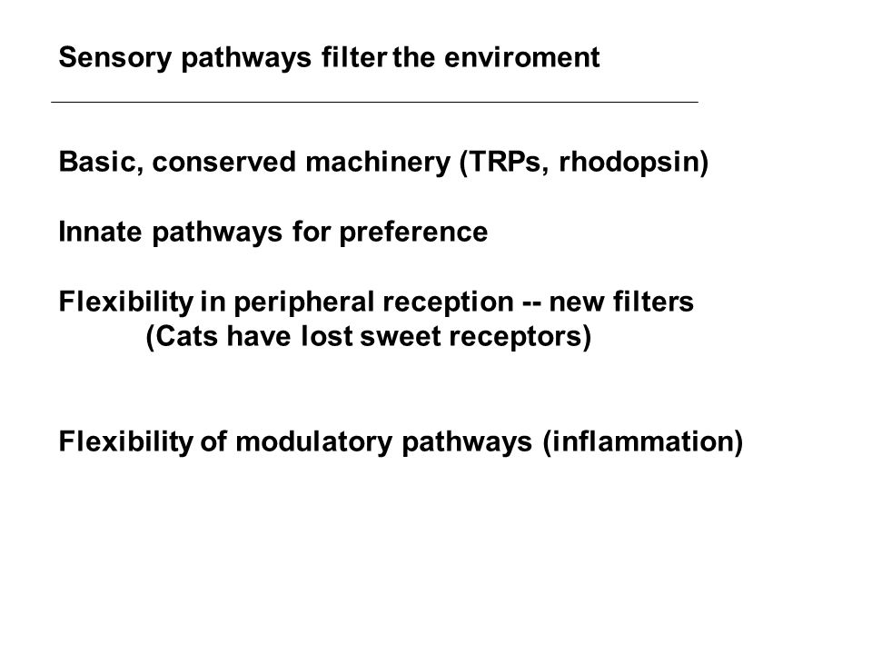 Sensory pathways filter the enviroment Basic, conserved machinery (TRPs, rhodopsin) Innate pathways for preference Flexibility in peripheral reception -- new filters (Cats have lost sweet receptors) Flexibility of modulatory pathways (inflammation)