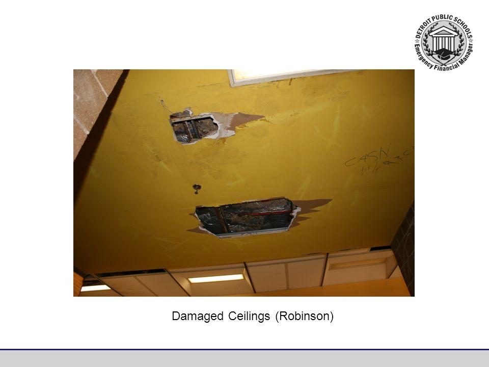 Damaged Ceilings (Robinson)