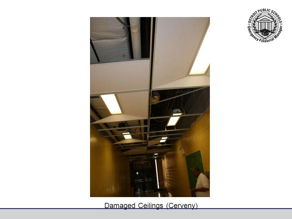 Damaged Ceilings (Cerveny)