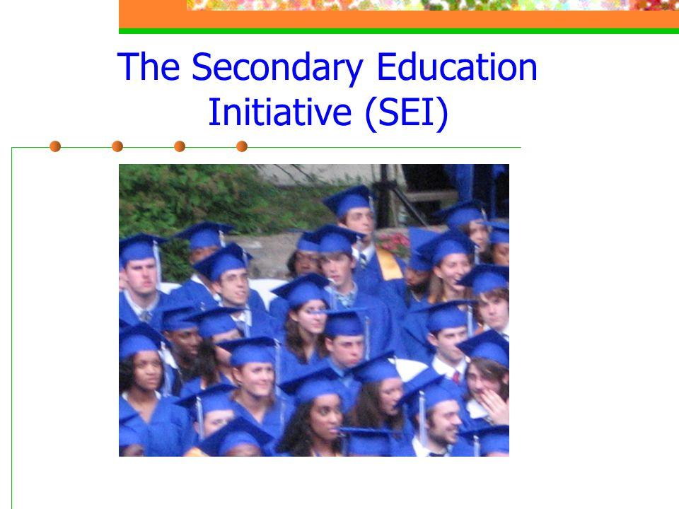 The Secondary Education Initiative (SEI)