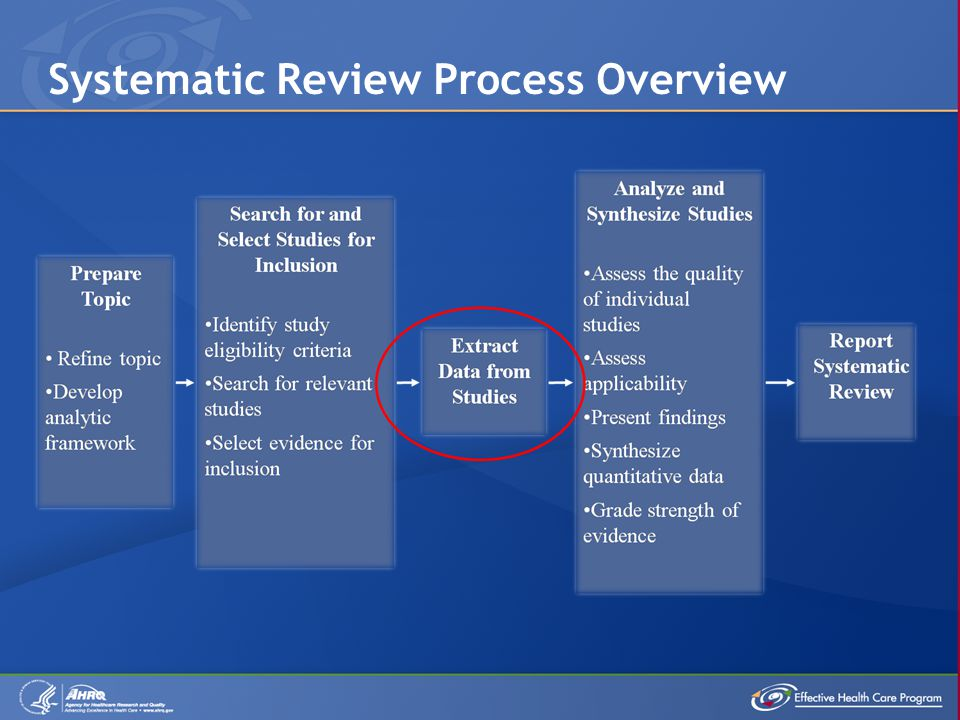 Systematic Review Process Overview