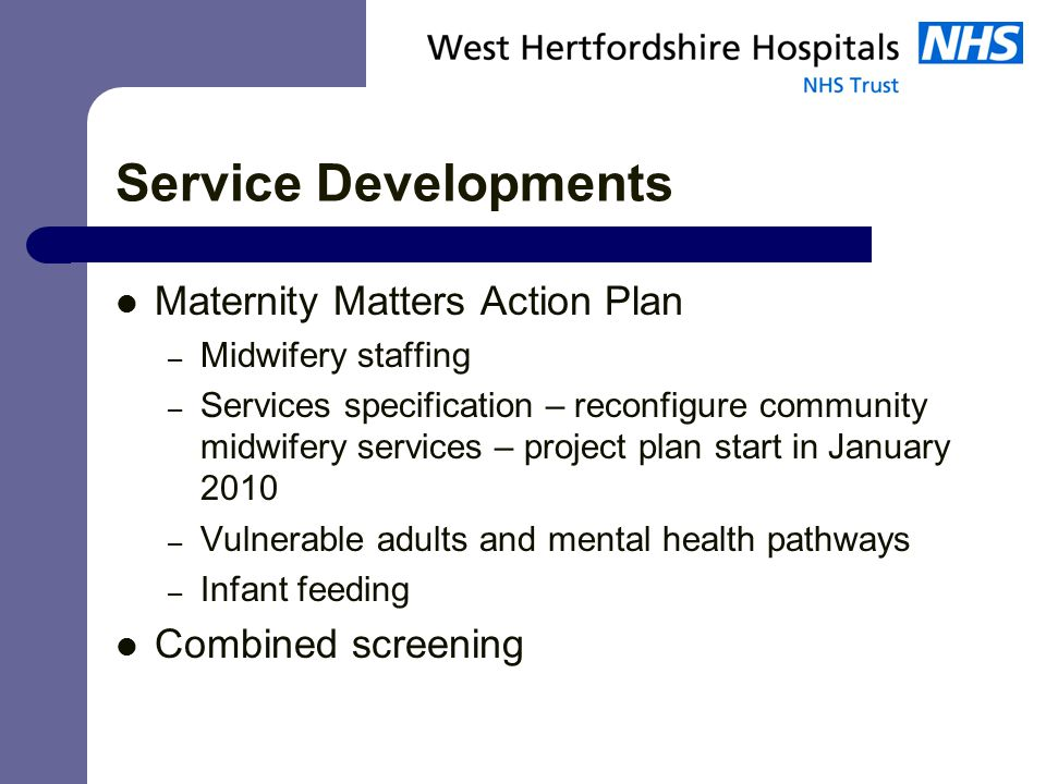 Service Developments Maternity Matters Action Plan – Midwifery staffing – Services specification – reconfigure community midwifery services – project plan start in January 2010 – Vulnerable adults and mental health pathways – Infant feeding Combined screening