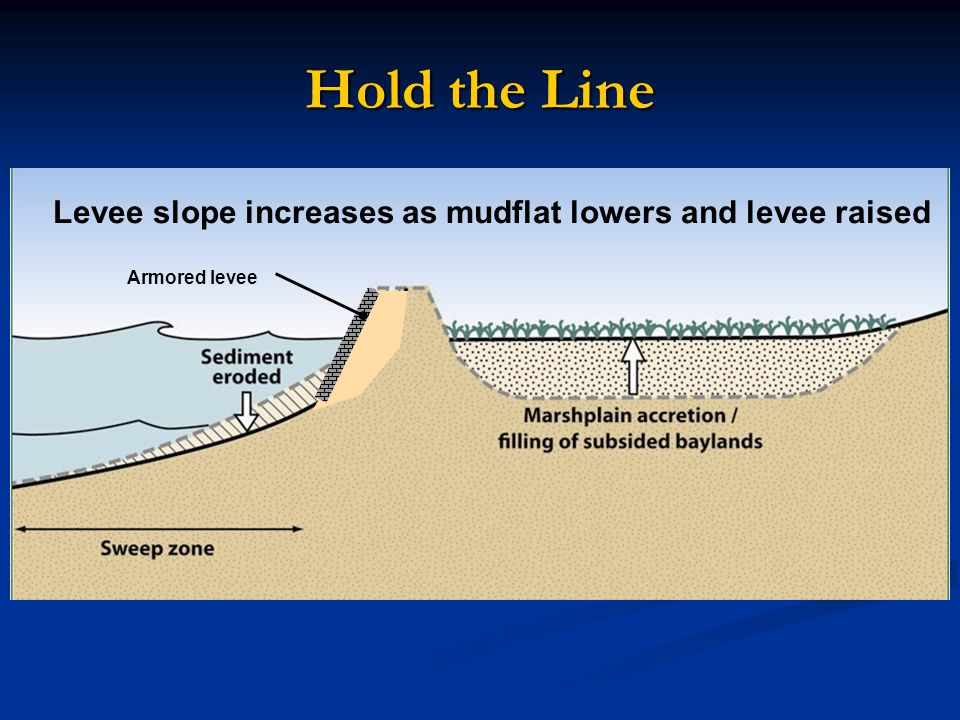 Armored levee Levee slope increases as mudflat lowers and levee raised