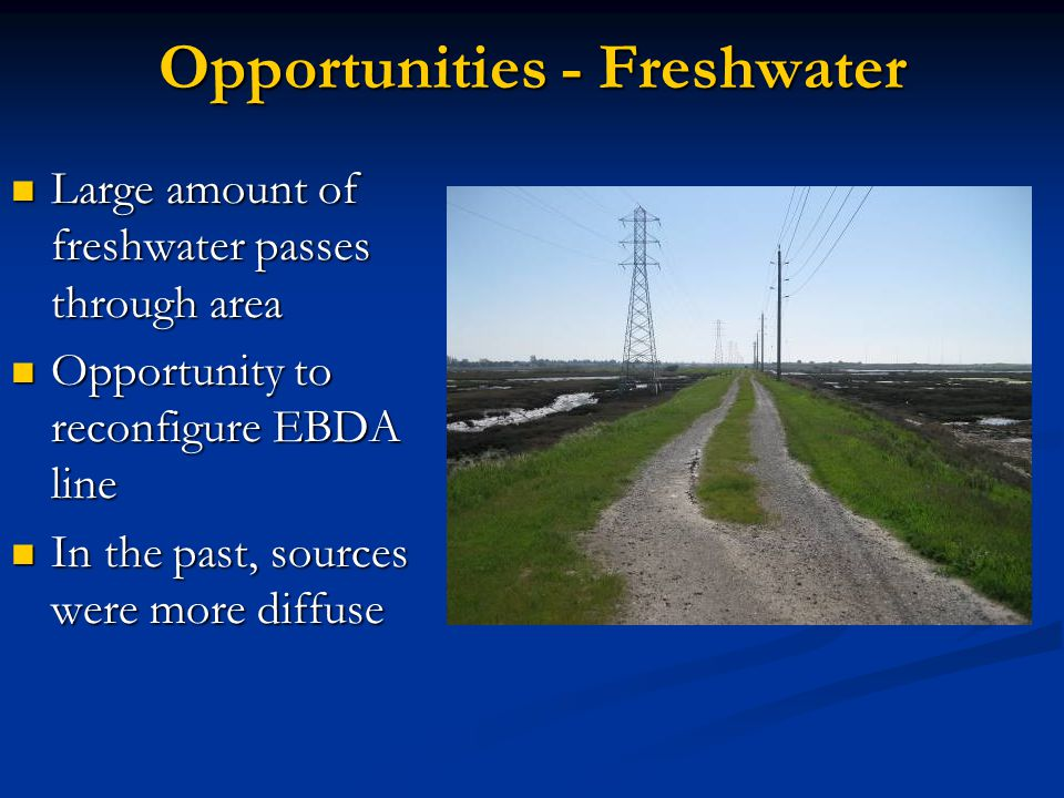 Opportunities - Freshwater Large amount of freshwater passes through area Large amount of freshwater passes through area Opportunity to reconfigure EBDA line Opportunity to reconfigure EBDA line In the past, sources were more diffuse In the past, sources were more diffuse