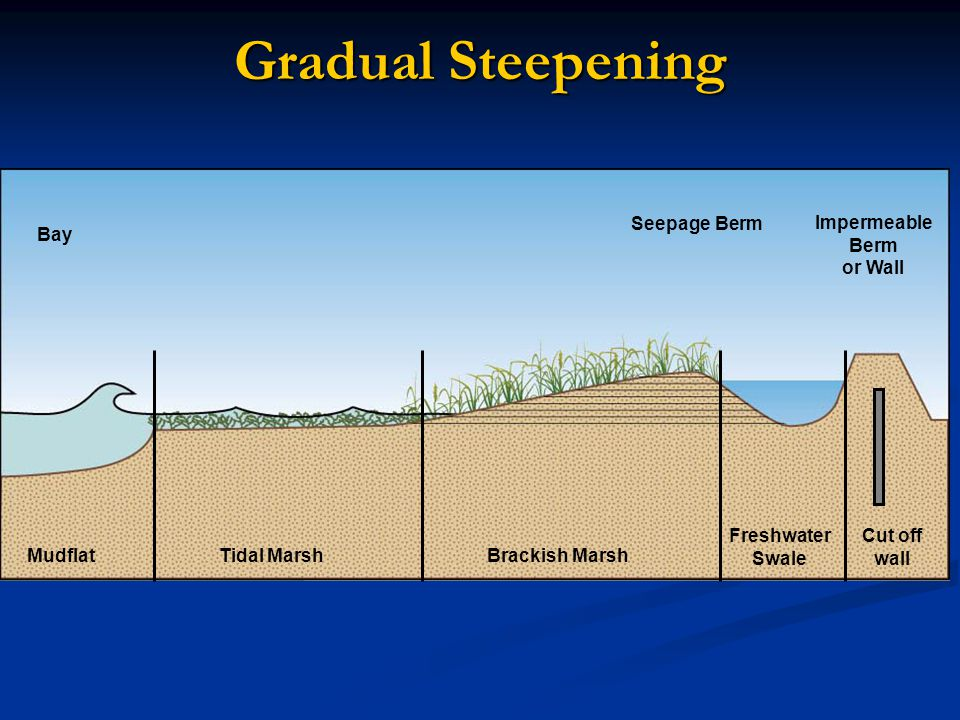 Gradual Steepening Rapid landward movement increases as sea level rises MudflatTidal MarshBrackish Marsh Freshwater Swale Impermeable Berm or Wall Seepage Berm Bay Cut off wall