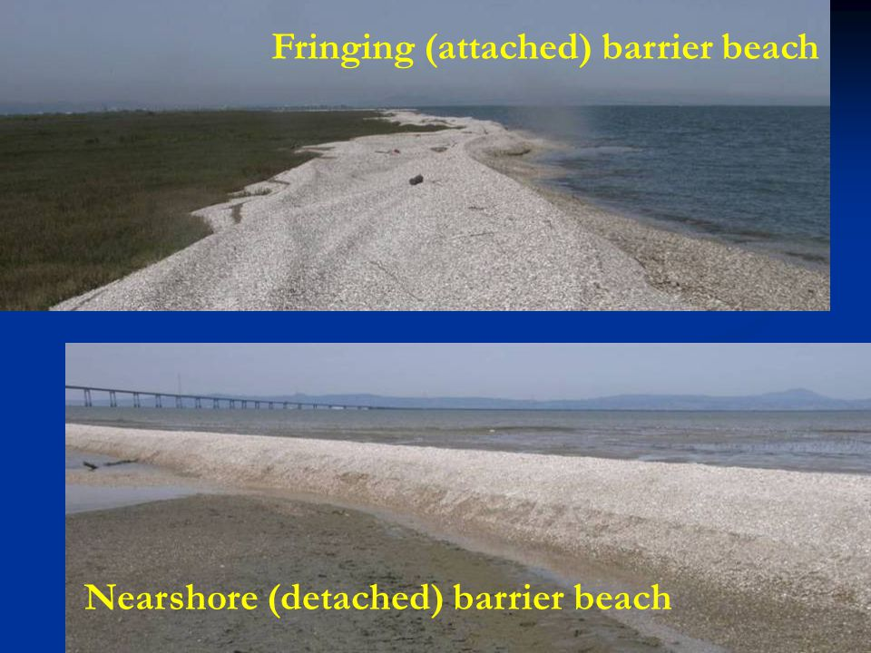 Nearshore (detached) barrier beach Fringing (attached) barrier beach