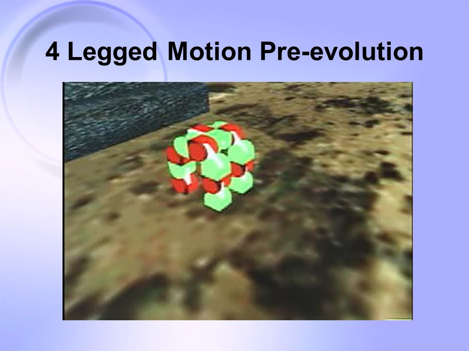 4 Legged Motion Pre-evolution