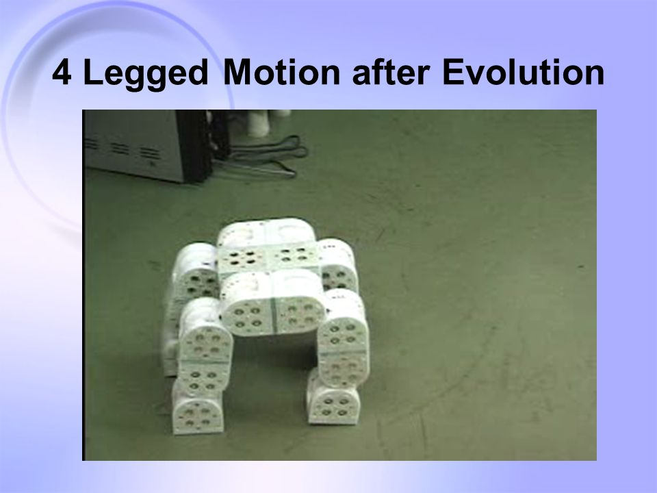 4 Legged Motion after Evolution