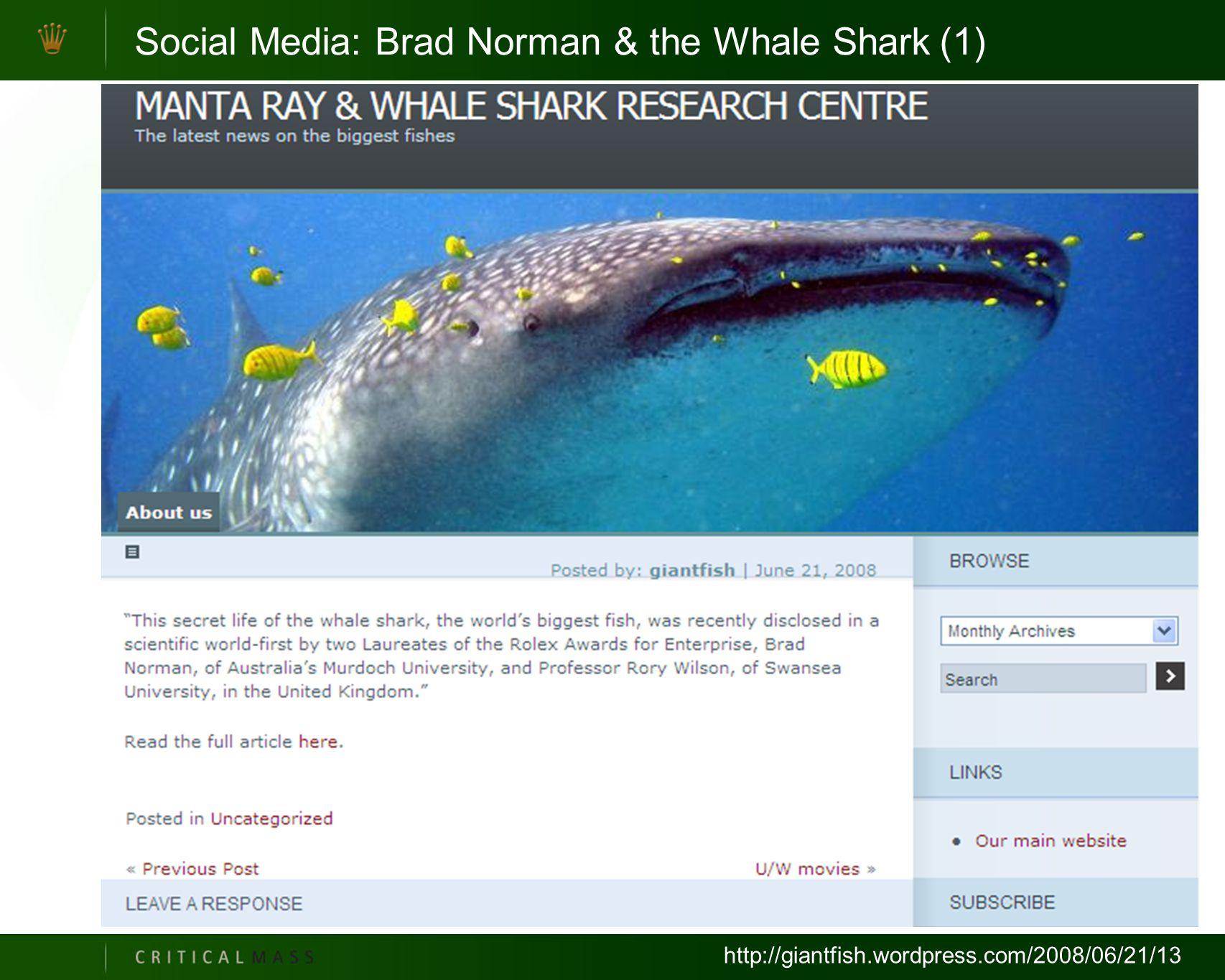 Social Media: Brad Norman & the Whale Shark (1) http://giantfish.wordpress.com/2008/06/21/13