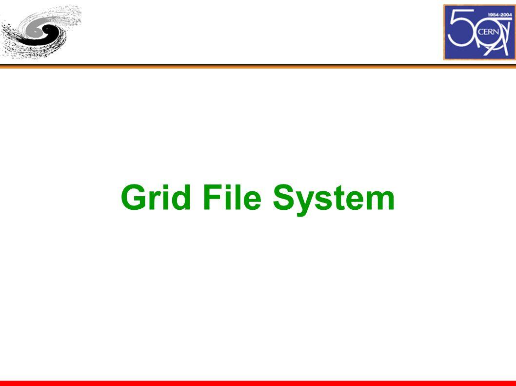 Grid File System