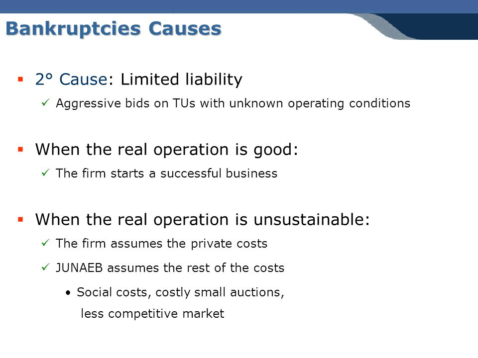Bankruptcies Causes  2° Cause: Limited liability Aggressive bids on TUs with unknown operating conditions  When the real operation is good: The firm starts a successful business  When the real operation is unsustainable: The firm assumes the private costs JUNAEB assumes the rest of the costs Social costs, costly small auctions, less competitive market