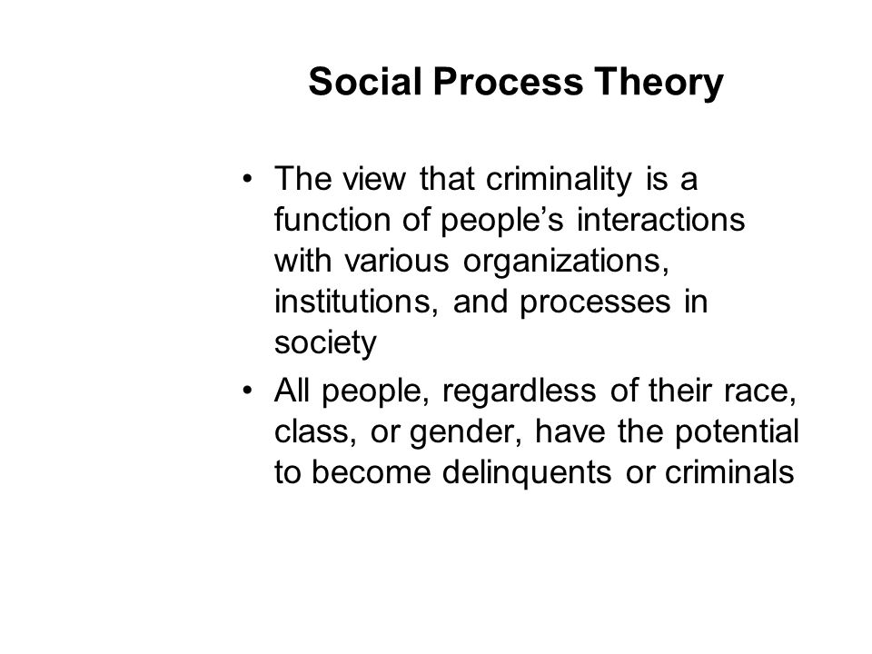 Social Process Theory The view that criminality is a function of people's interactions with various organizations, institutions, and processes in society All people, regardless of their race, class, or gender, have the potential to become delinquents or criminals