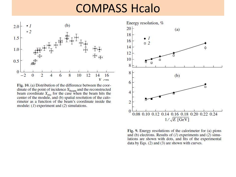 COMPASS Hcalo