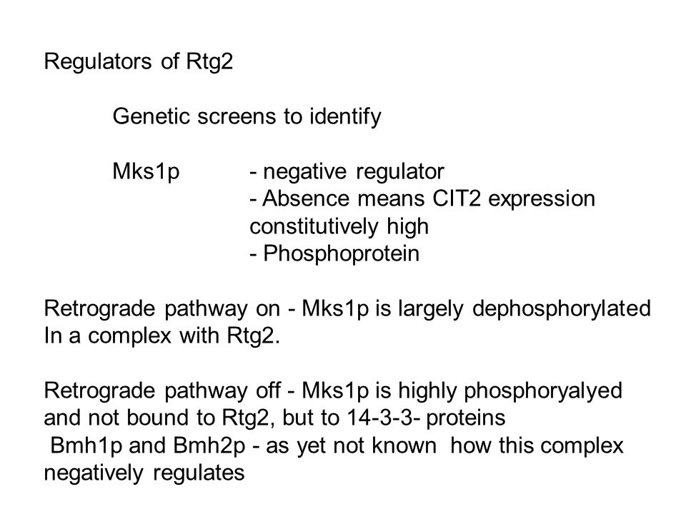 Regulators of Rtg2 Genetic screens to identify Mks1p - negative regulator - Absence means CIT2 expression constitutively high - Phosphoprotein Retrogr