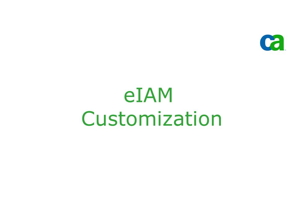 eIAM Customization