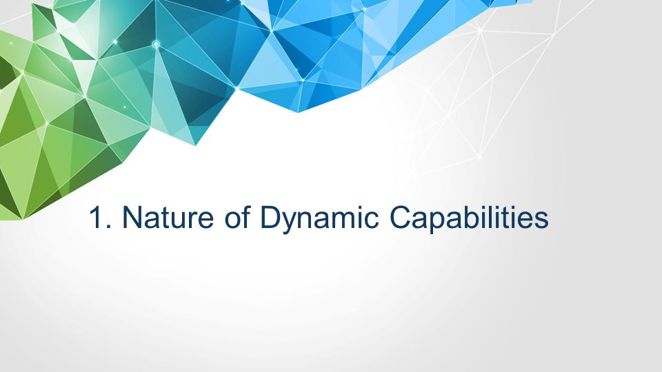 1. Nature of Dynamic Capabilities