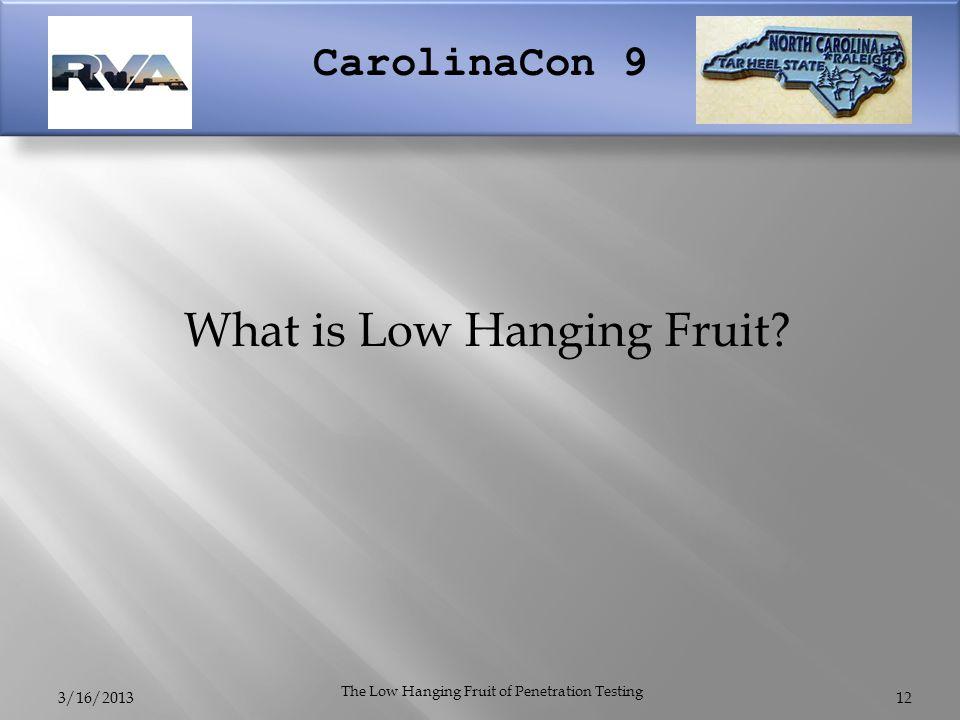 CarolinaCon 9 3/16/2013 The Low Hanging Fruit of Penetration Testing What is Low Hanging Fruit 12