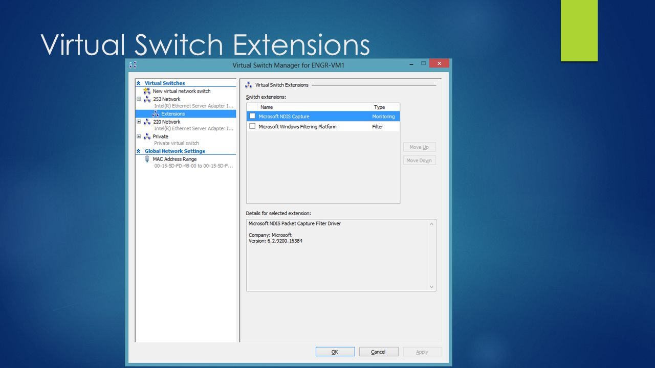 Virtual Switch Extensions