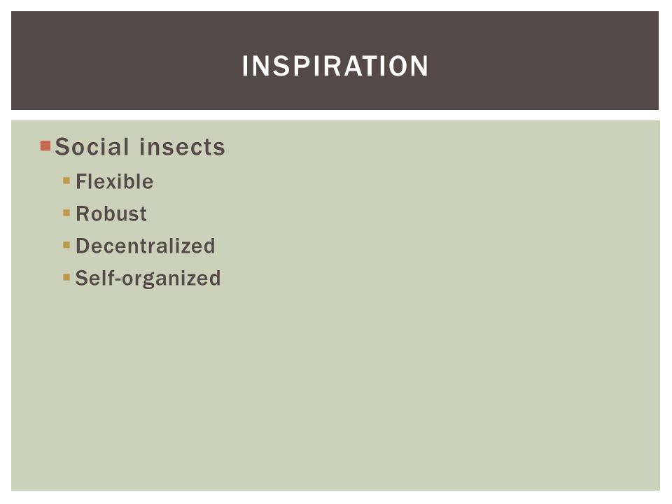  Social insects  Flexible  Robust  Decentralized  Self-organized INSPIRATION