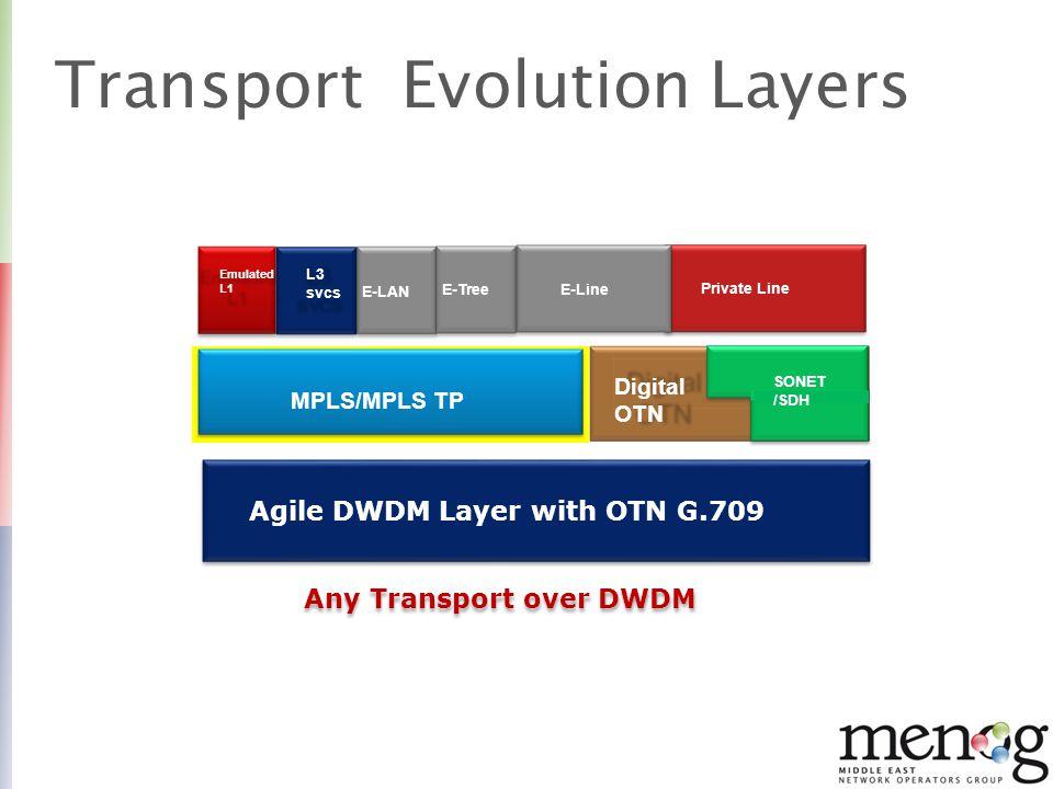 Agenda Introduction Fiber Type and DWDM Transmission 10G to 100G ROADM and Control Plane