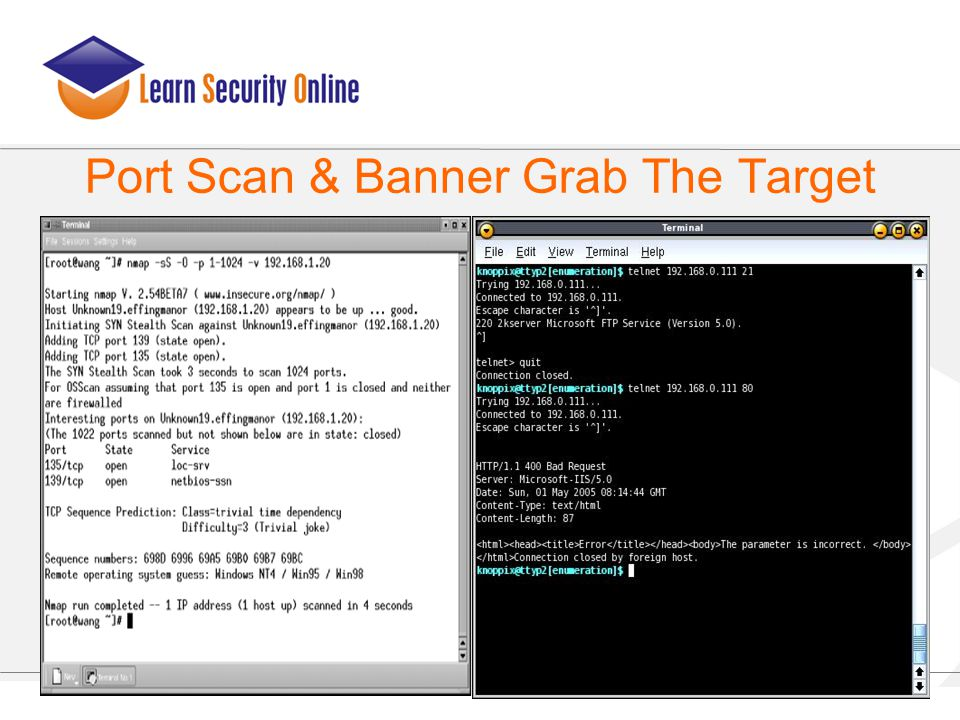 Port Scan & Banner Grab The Target