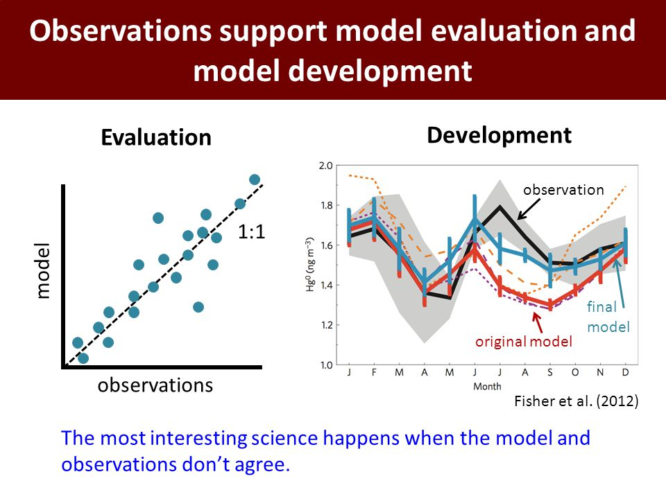 Observations support model evaluation and model development observations model 1:1 Evaluation Development observation original model final model Fishe
