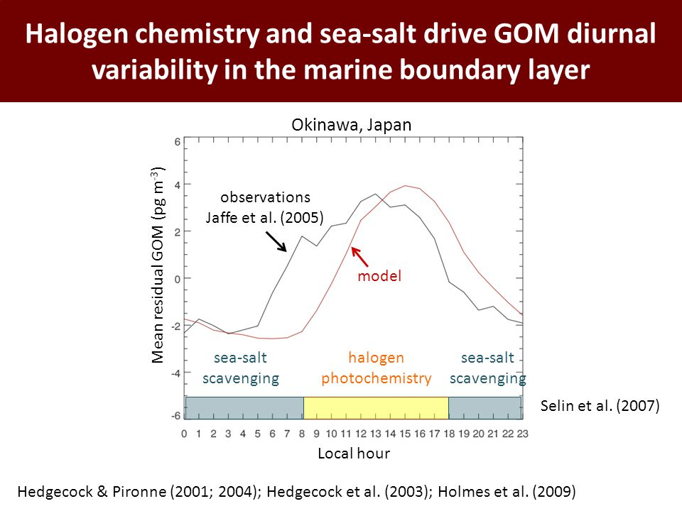 Halogen chemistry and sea-salt drive GOM diurnal variability in the marine boundary layer Selin et al. (2007) Okinawa, Japan model observations Jaffe