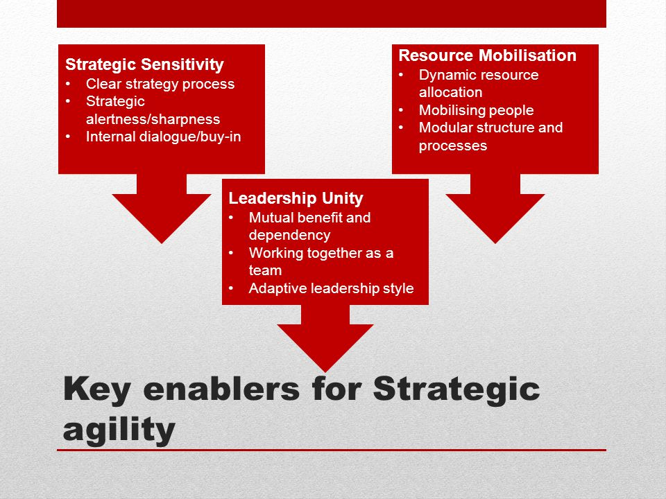 Key enablers for Strategic agility Strategic Sensitivity Clear strategy process Strategic alertness/sharpness Internal dialogue/buy-in Resource Mobilisation Dynamic resource allocation Mobilising people Modular structure and processes Leadership Unity Mutual benefit and dependency Working together as a team Adaptive leadership style