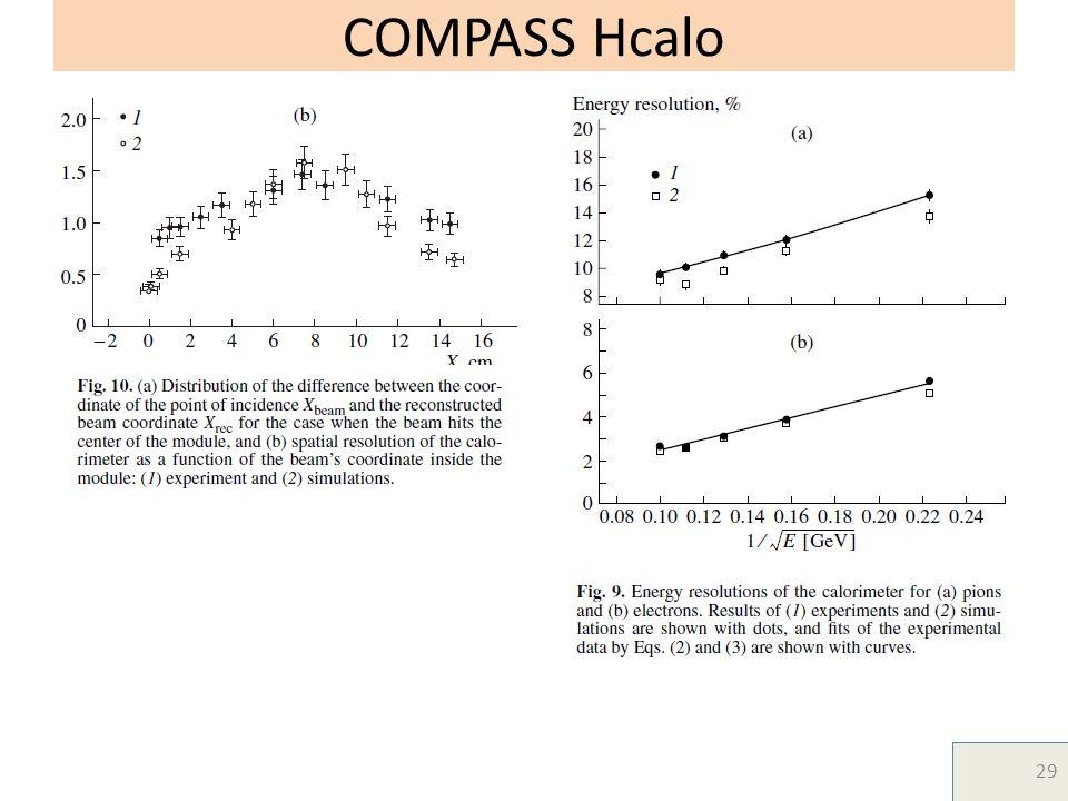 COMPASS Hcalo 29