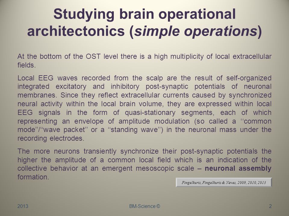 Studying brain operational architectonics (simple operations) At the bottom of the OST level there is a high multiplicity of local extracellular fields.