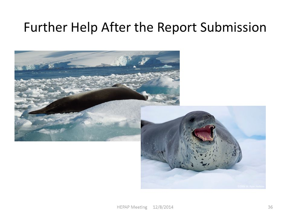 Further Help After the Report Submission HEPAP Meeting 12/8/201436