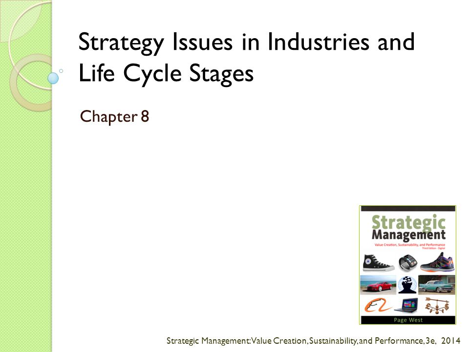 Strategic Management: Value Creation, Sustainability, and Performance, 3e, 2014 Strategy Issues in Industries and Life Cycle Stages Chapter 8