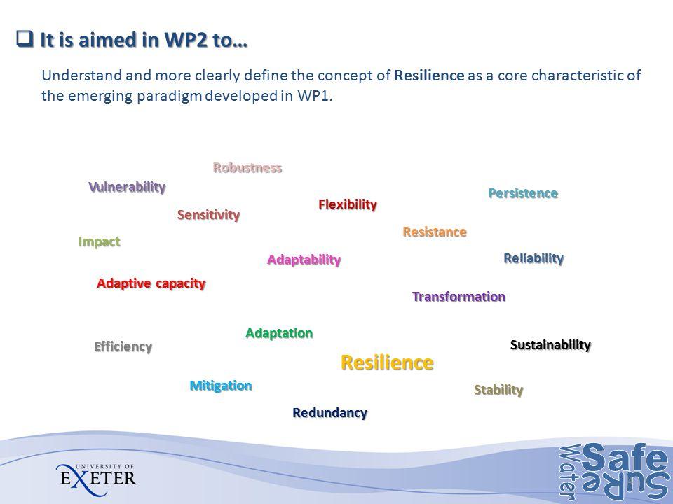 Adaptability Vulnerability Adaptation Adaptive capacity Flexibility Impact Mitigation Resilience Resistance Robustness Sensitivity Stability Sustainab