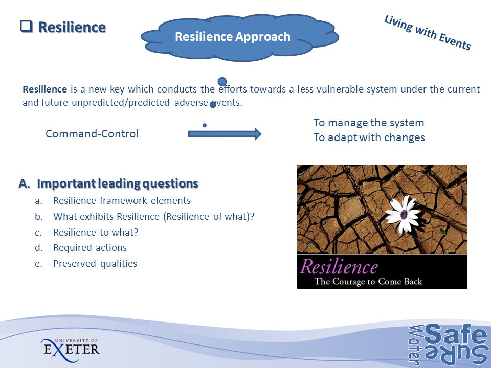 Command-Control To manage the system To adapt with changes Resilience Approach A.Important leading questions a.Resilience framework elements b.What ex
