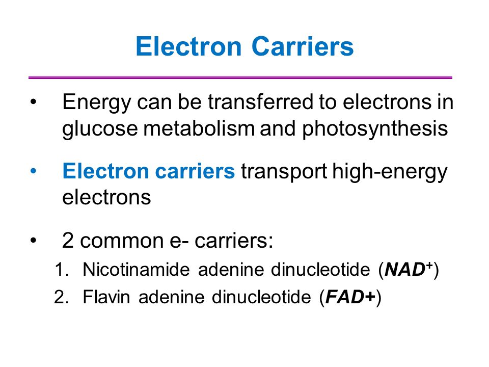 Electron Carriers Energy can be transferred to electrons in glucose metabolism and photosynthesis Electron carriers transport high-energy electrons 2