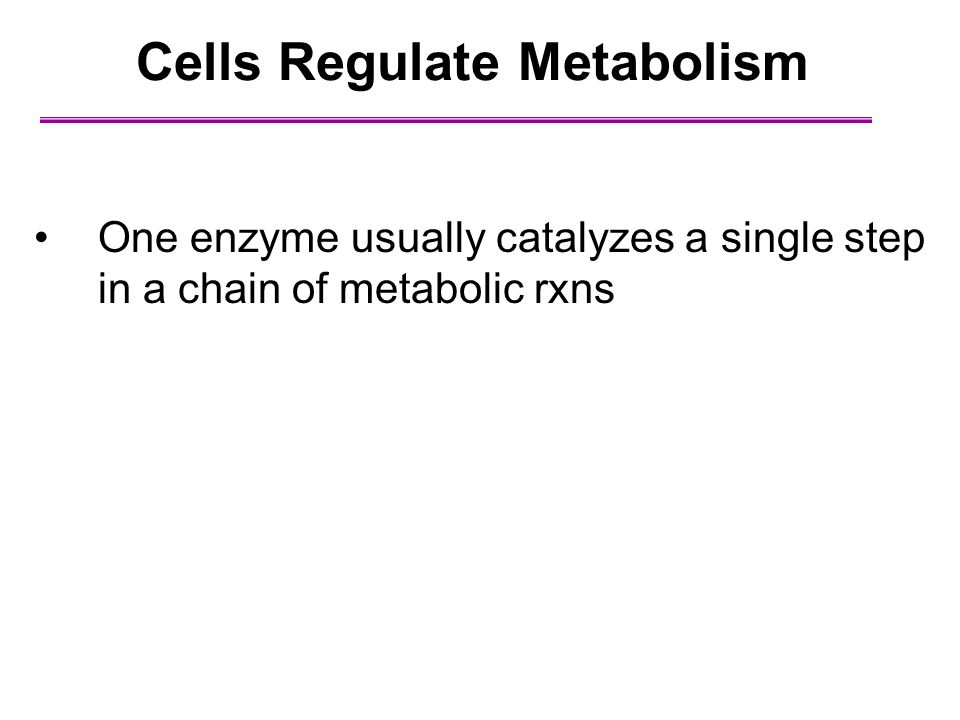 Cells Regulate Metabolism One enzyme usually catalyzes a single step in a chain of metabolic rxns