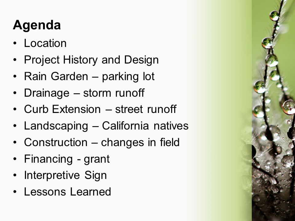Agenda Location Project History and Design Rain Garden – parking lot Drainage – storm runoff Curb Extension – street runoff Landscaping – California n