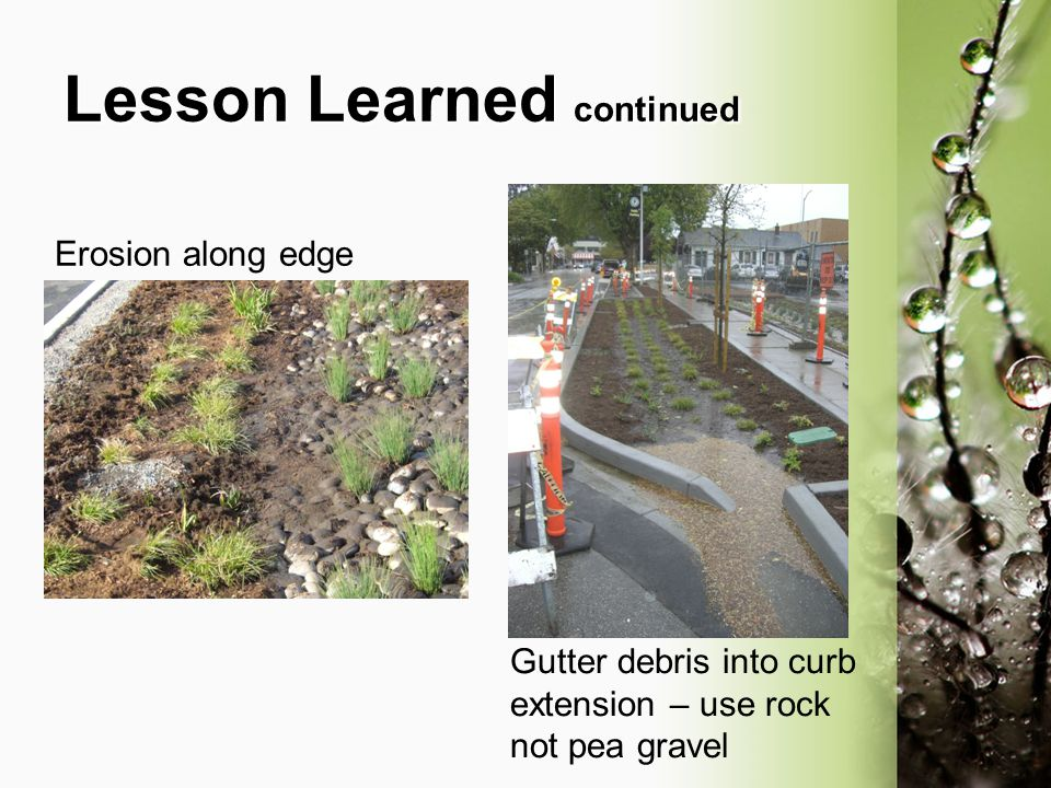 Lesson Learned continued Erosion along edge Gutter debris into curb extension – use rock not pea gravel