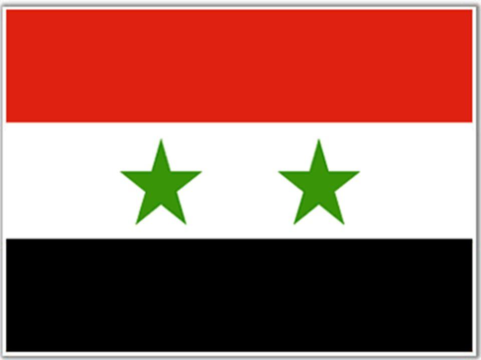 Authoritarian upgrading in Syria.Strict control over civil institutions.