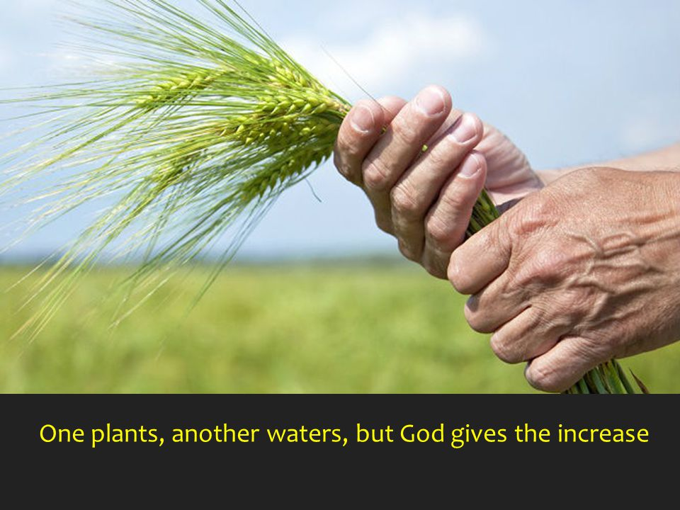 One plants, another waters, but God gives the increase