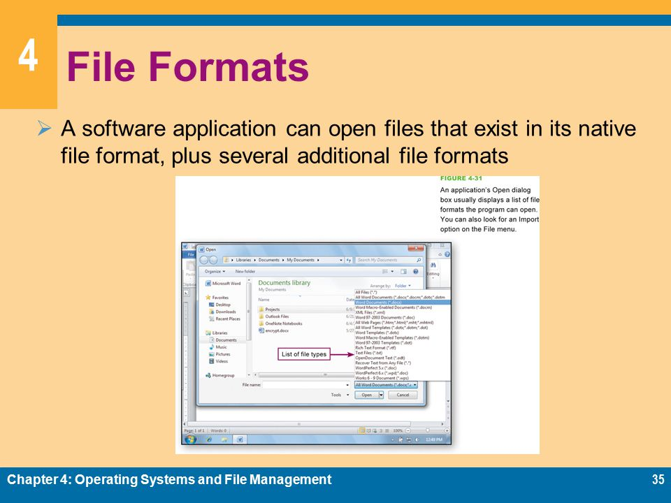 4 File Formats  A software application can open files that exist in its native file format, plus several additional file formats Chapter 4: Operating Systems and File Management35