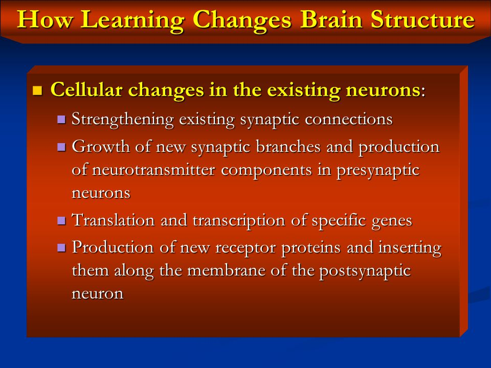 How Learning Changes Brain Structure Any type of learning must result in physical changes in brain structure: Any type of learning must result in phys