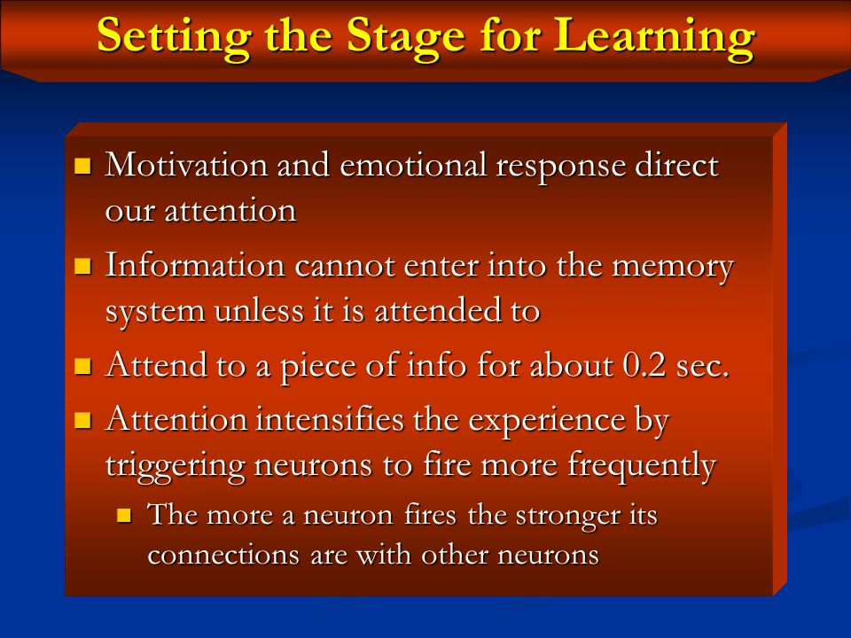 Phases of Learning For information to be retained in LT memory, it has to be processed in phases For information to be retained in LT memory, it has t