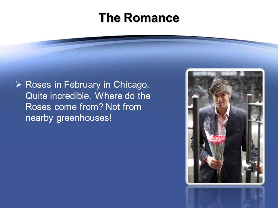 The Romance  Roses in February in Chicago. Quite incredible.