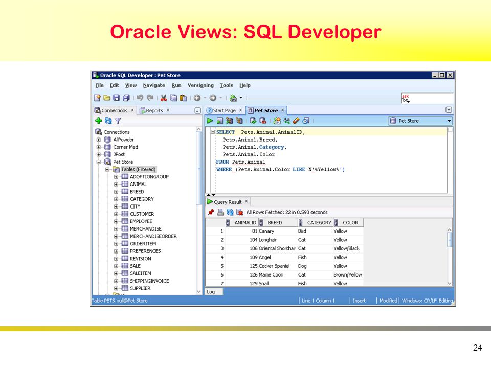 24 Oracle Views: SQL Developer