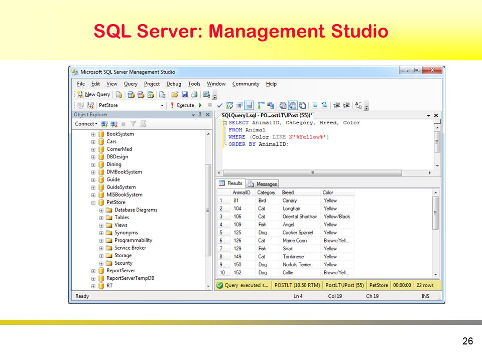 SQL Server: Management Studio 26
