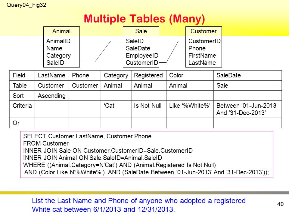 Multiple Tables (Many) 40 SELECT Customer.LastName, Customer.Phone FROM Customer INNER JOIN Sale ON Customer.CustomerID=Sale.CustomerID INNER JOIN Animal ON Sale.SaleID=Animal.SaleID WHERE ((Animal.Category=N'Cat') AND (Animal.Registered Is Not Null) AND (Color Like N'%White%') AND (SaleDate Between '01-Jun-2013' And '31-Dec-2013')); Query04_Fig32 SaleID SaleDate EmployeeID CustomerID Sale FieldLastNamePhoneCategoryRegisteredColorSaleDate TableCustomer Animal Sale SortAscending Criteria'Cat'Is Not NullLike '%White%'Between '01-Jun-2013' And '31-Dec-2013' Or CustomerID Phone FirstName LastName Customer AnimalID Name Category SaleID Animal List the Last Name and Phone of anyone who adopted a registered White cat between 6/1/2013 and 12/31/2013.