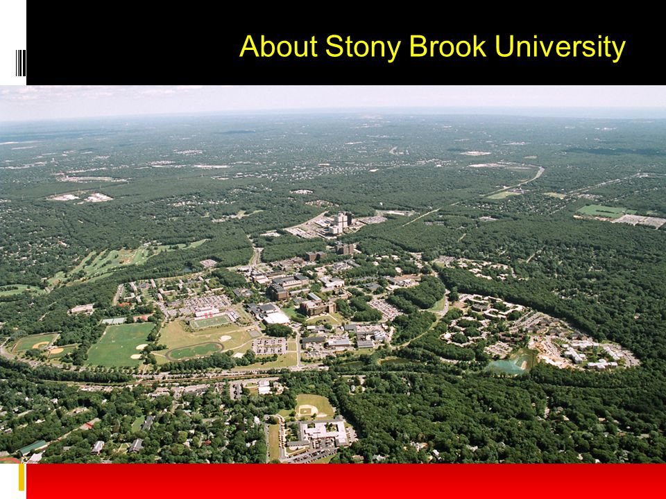 About Stony Brook University
