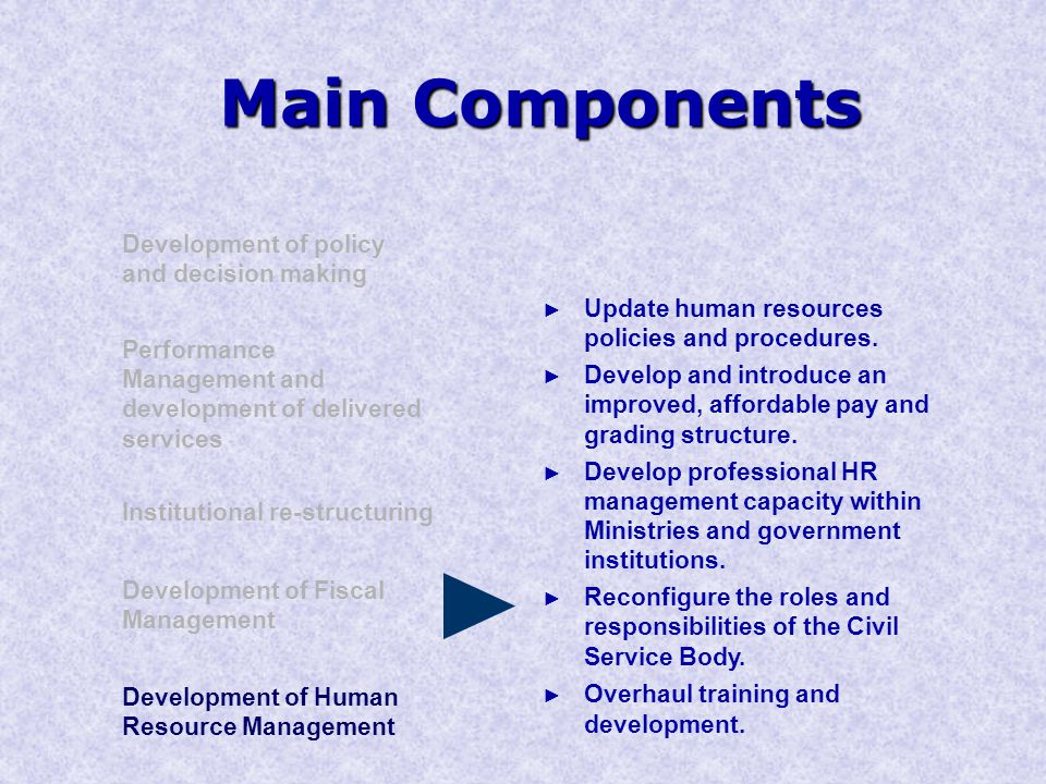 Main Components Development of policy and decision making Performance Management and development of delivered services Institutional re-structuring Development of Human Resource Management Development of Fiscal Management ► Update human resources policies and procedures.